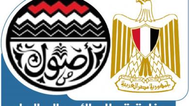 """صورة """"قطاع الأعمال"""": إعادة تشكيل مجلس إدارة شركة النصر للتصدير والاستيراد"""
