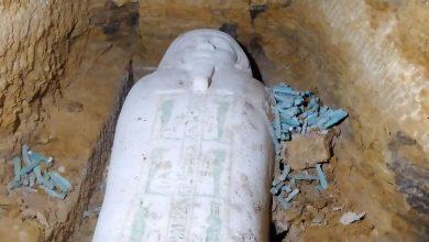 صورة العثور على تابوت حجري وتماثيل من الاوشابتي بمنطقة آثار الغريفة بالمنيا