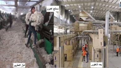 صورة هشام توفيق: محلج الفيوم المطور أولى ثمار خطة النهوض بالقطن المصري وصناعة الغزل والنسيج