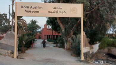 صورة وزارة السياحة:الإنتهاء من رفع كفاءة الخدمات السياحية المقدمة للزائرين فى عدد من المواقع الأثرية